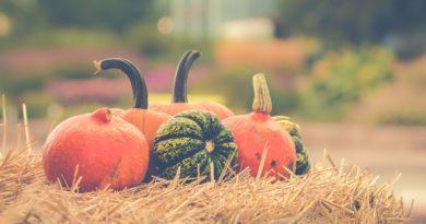 autunno e alimentazione
