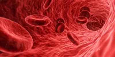 sangue in medicina cinese