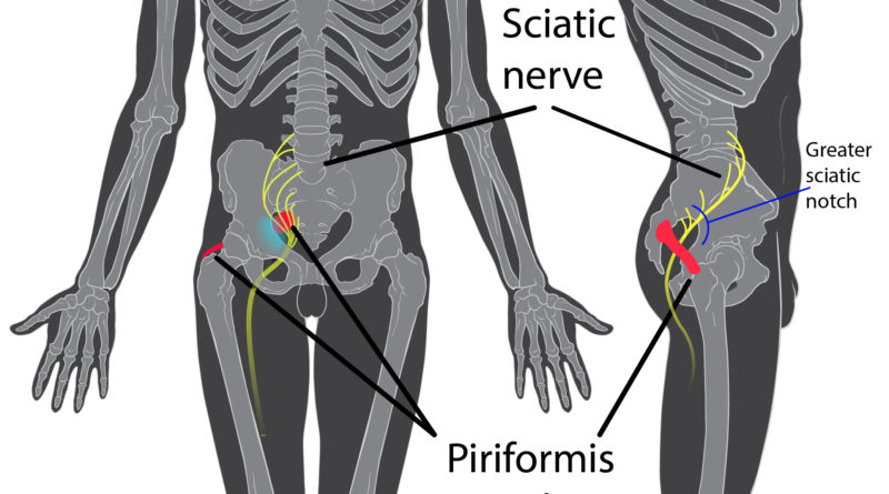 azione dell'agopuntura sul dolore