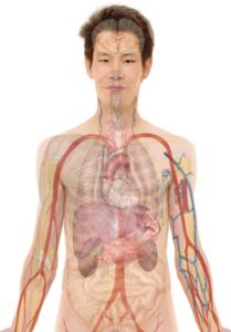 fattori patogeni