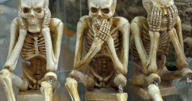 ossa in medicina cinese