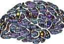 cervello in medicina cinese